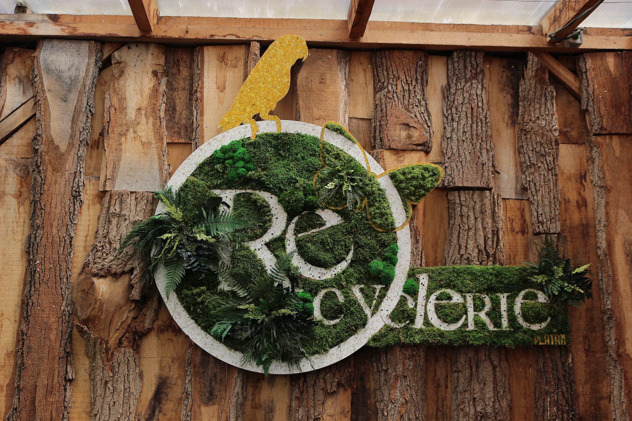 Témoignage de Marion, cheffe de projets éco-culturels àla REcyclerie